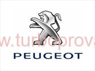 Turbodmychadlo Peugeot 307 1.4 HDi, TURBO 5435 988 0009